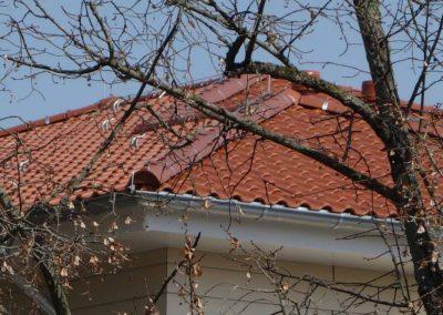 dachbau-hase-refrenzen-seniorenheim-beeskow (7)